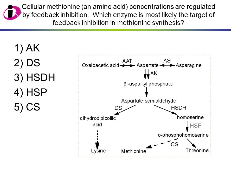 Cellular methionine (an amino acid) concentrations are regulated by feedback inhibition. Which enzyme is most likely the target of feedback inhibition in methionine synthesis