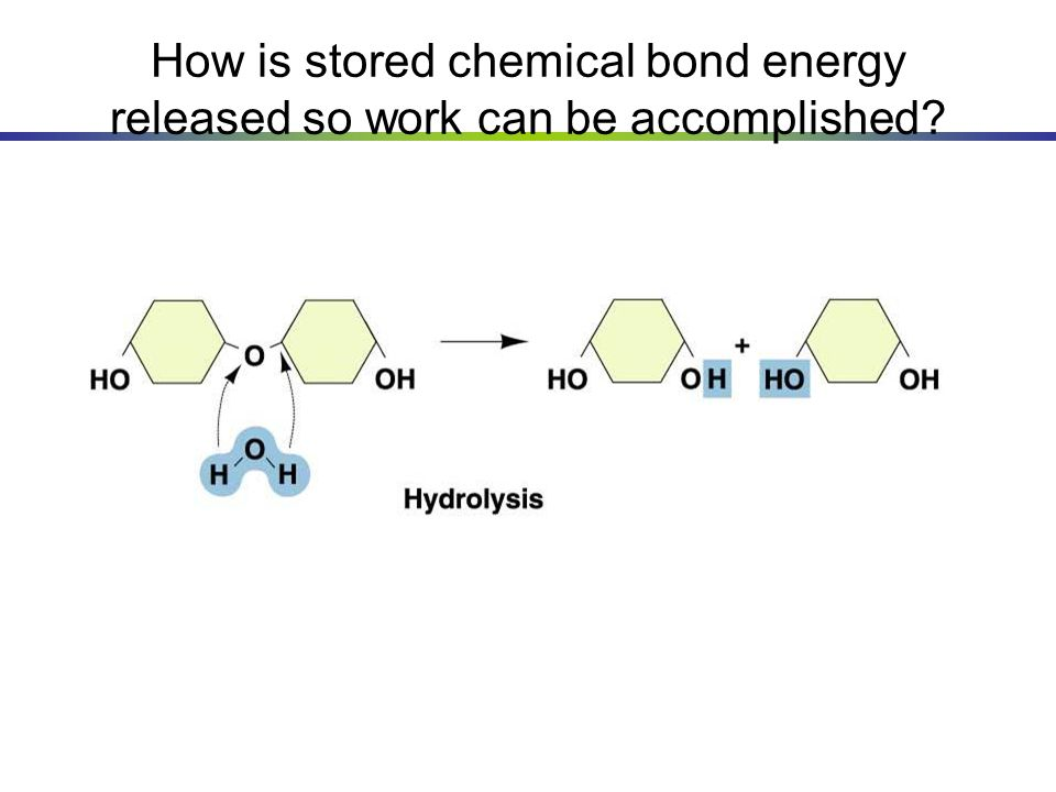 How is stored chemical bond energy released so work can be accomplished