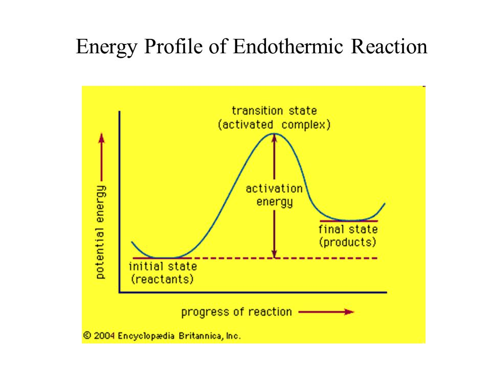 Energy Profile of Endothermic Reaction