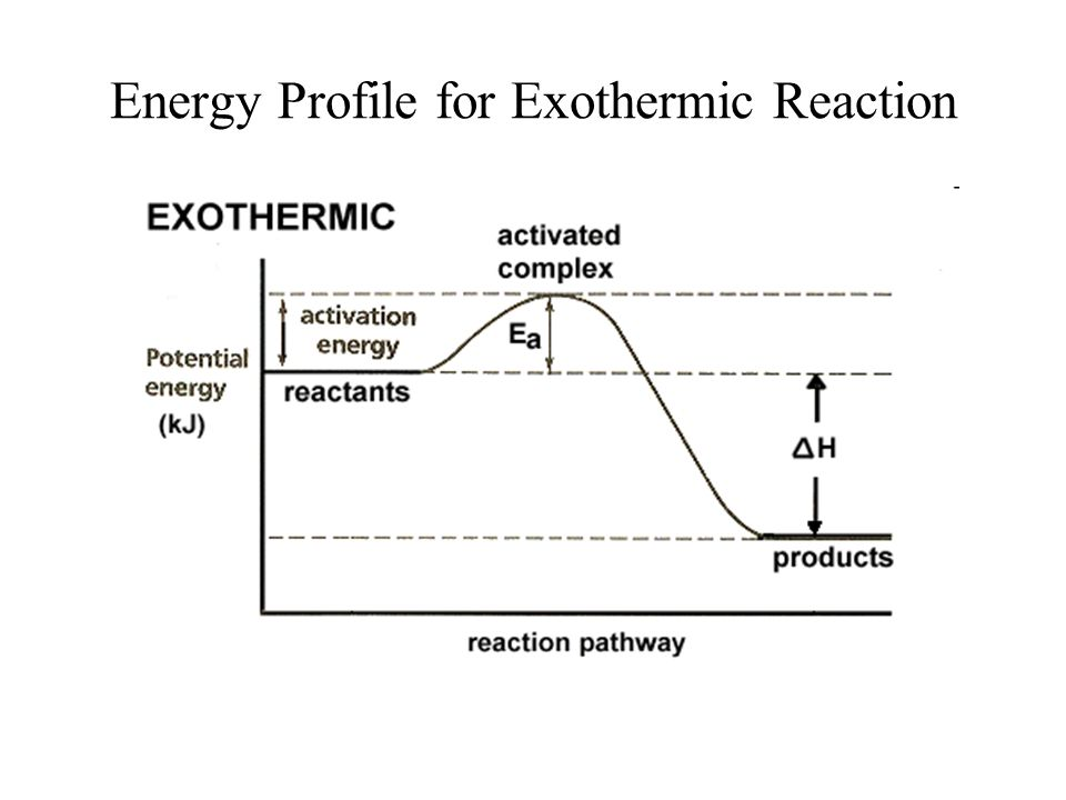 Energy Profile for Exothermic Reaction