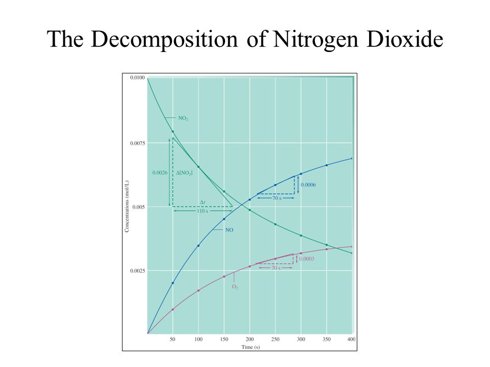 The Decomposition of Nitrogen Dioxide
