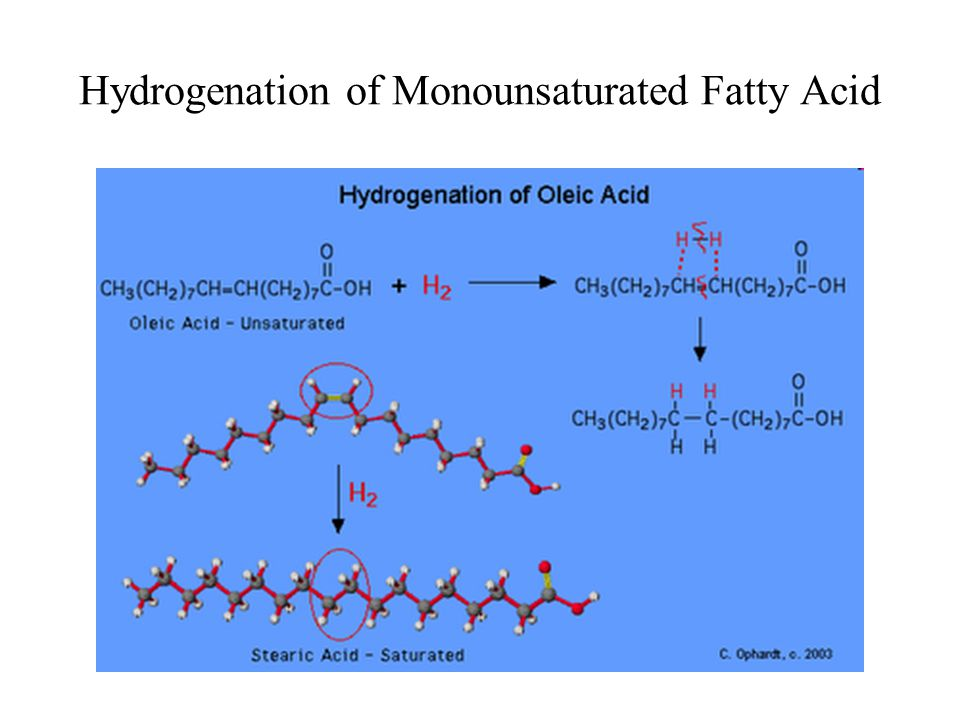 Hydrogenation of Monounsaturated Fatty Acid