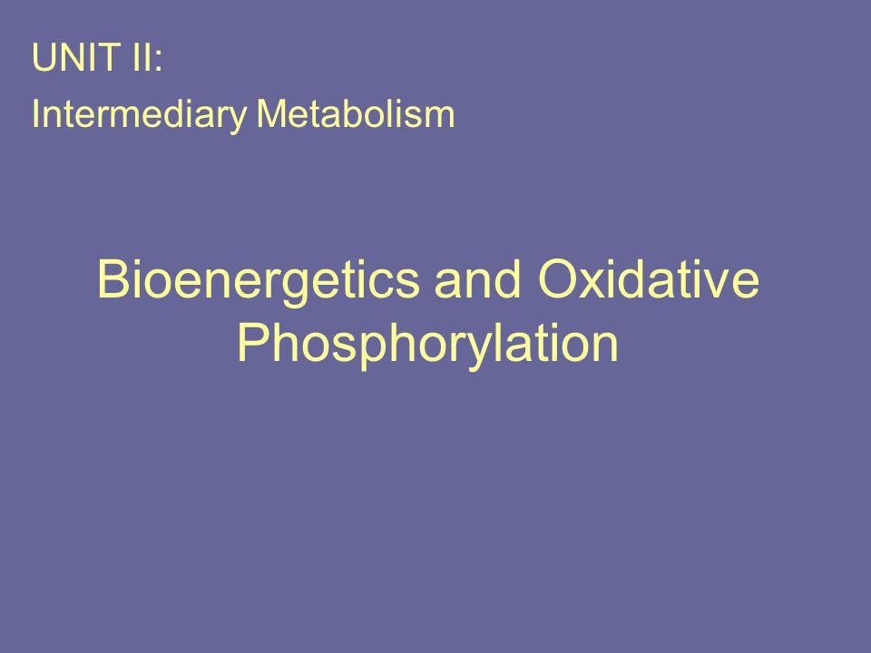 Bioenergetics and Oxidative Phosphorylation