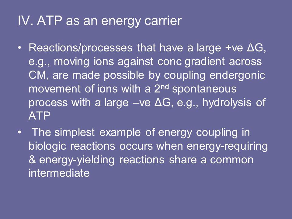 IV. ATP as an energy carrier