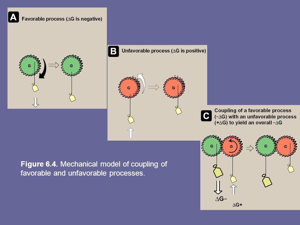 Figure 6.4. Mechanical model of coupling of