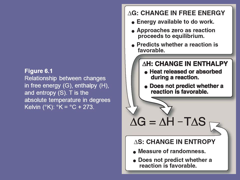 Figure 6.1 Relationship between changes in free energy (G), enthalpy (H), and entropy (S). T is the absolute temperature in degrees.