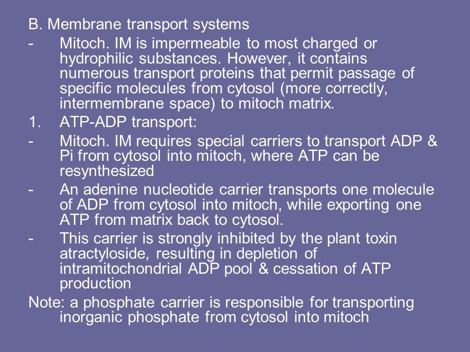 B. Membrane transport systems