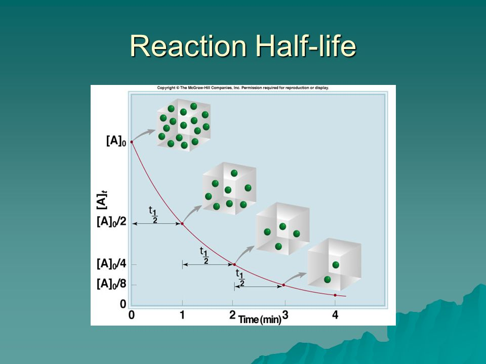 Reaction Half-life College student's four years of undergraduate work.