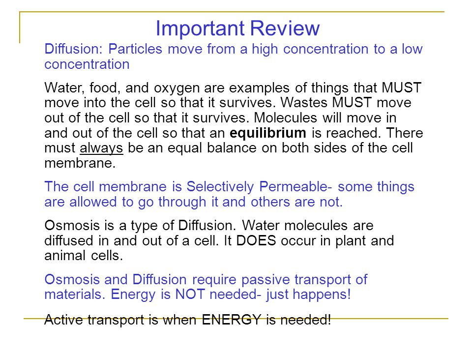Important Review: Diffusion: Particles move from a high concentration to a low concentration.