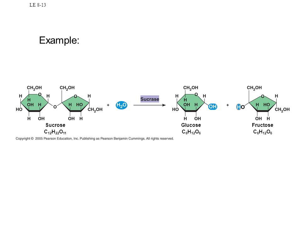 LE 8-13 Example: Sucrose C12H22O11 Glucose C6H12O6 Fructose C6H12O6