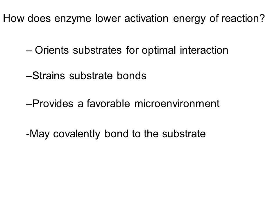 How does enzyme lower activation energy of reaction
