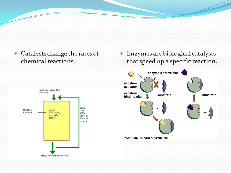 Catalysts change the rates of chemical reactions.