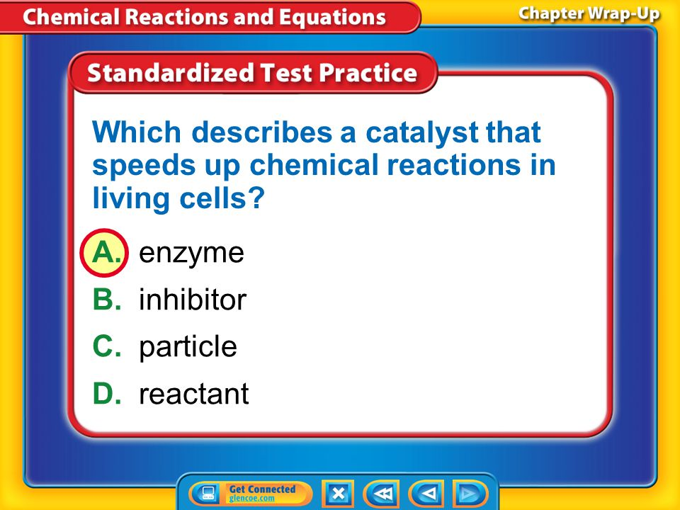 Which describes a catalyst that speeds up chemical reactions in living cells