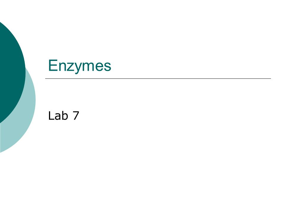Enzymes Lab 7