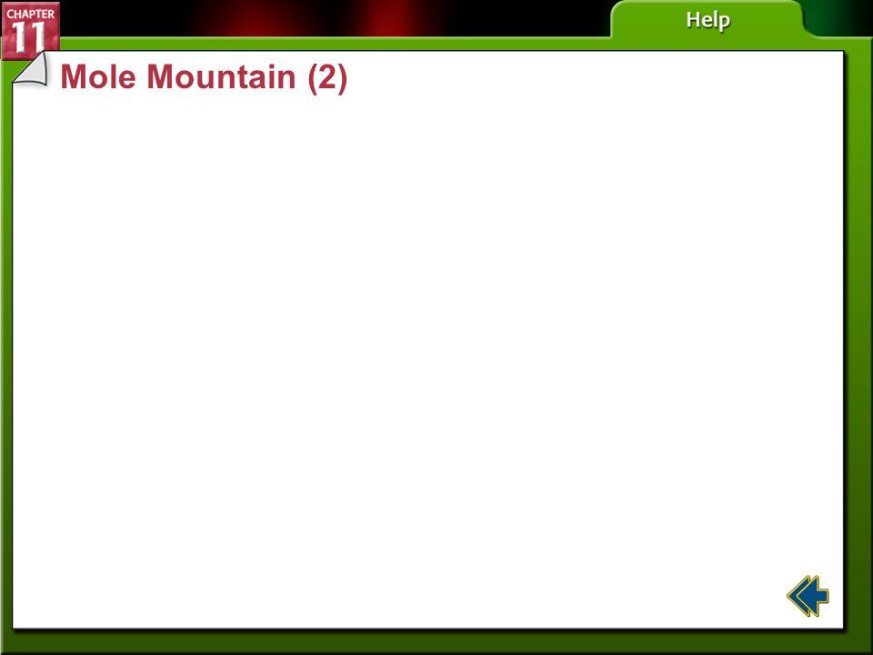 Mole Mountain (2) Section 11-2