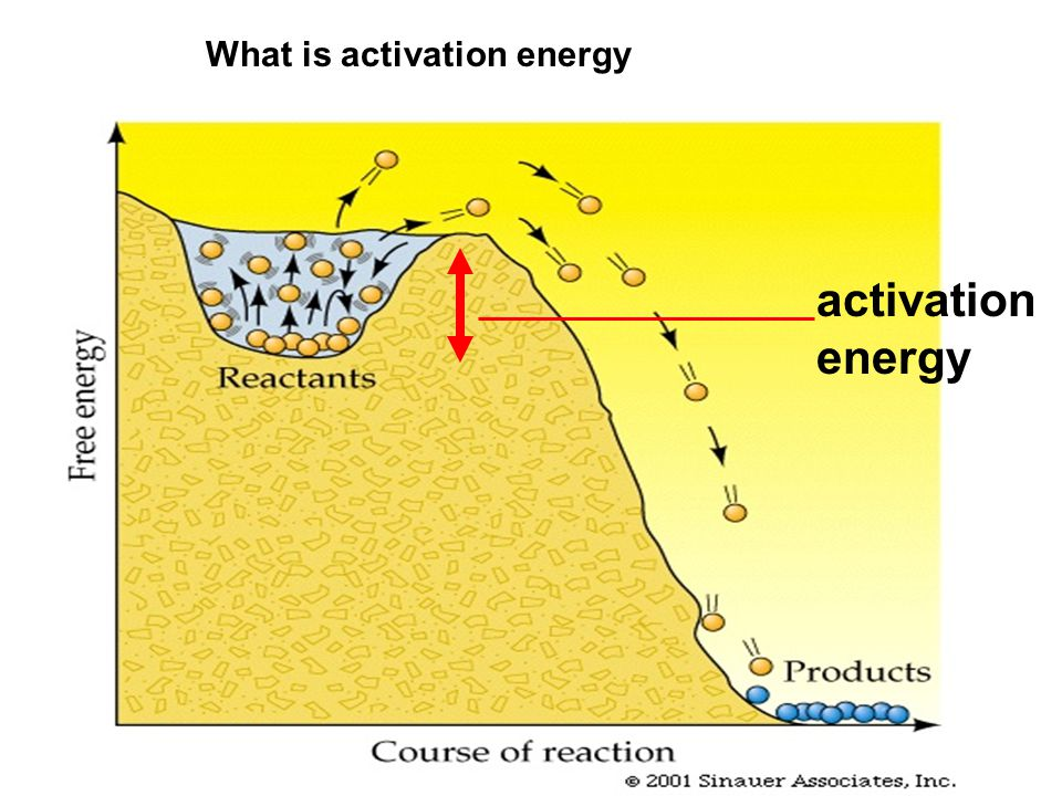 What is activation energy