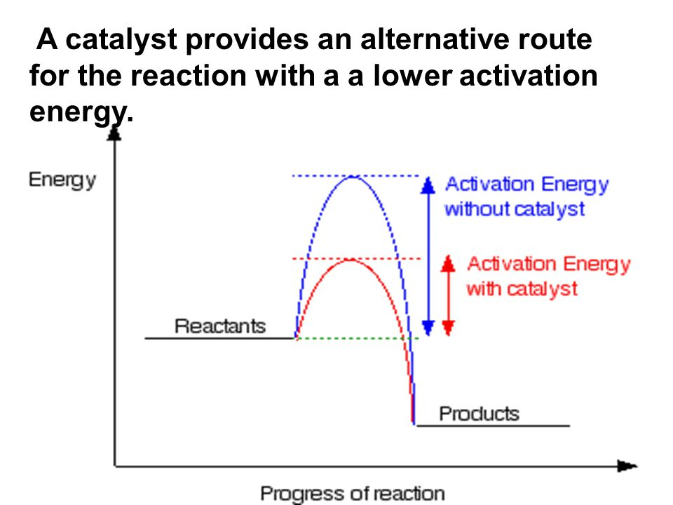 A catalyst provides an alternative route for the reaction with a a lower activation energy.