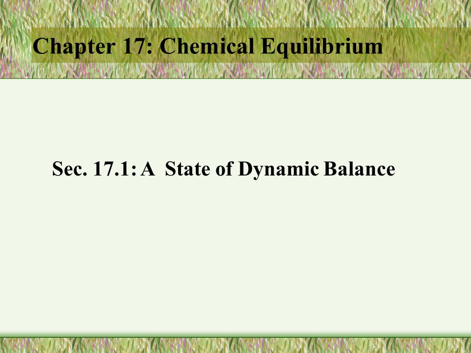 Chapter 17: Chemical Equilibrium