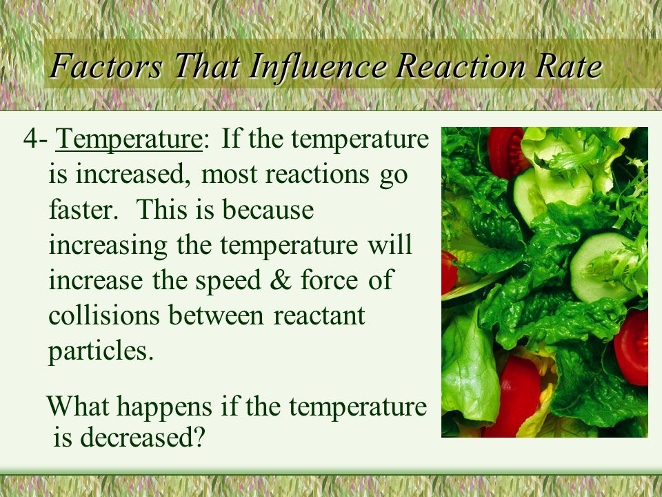 Factors That Influence Reaction Rate