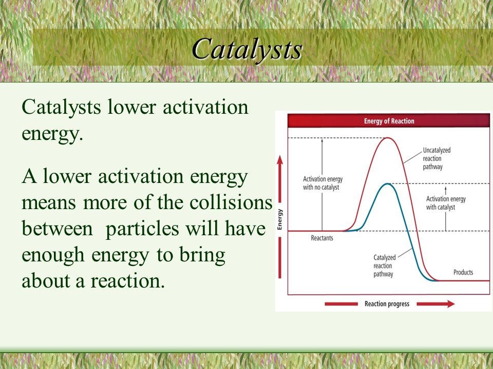 Catalysts Catalysts lower activation energy.
