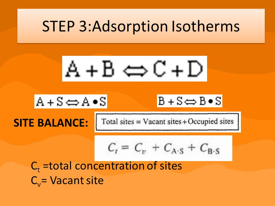 STEP 3:Adsorption Isotherms