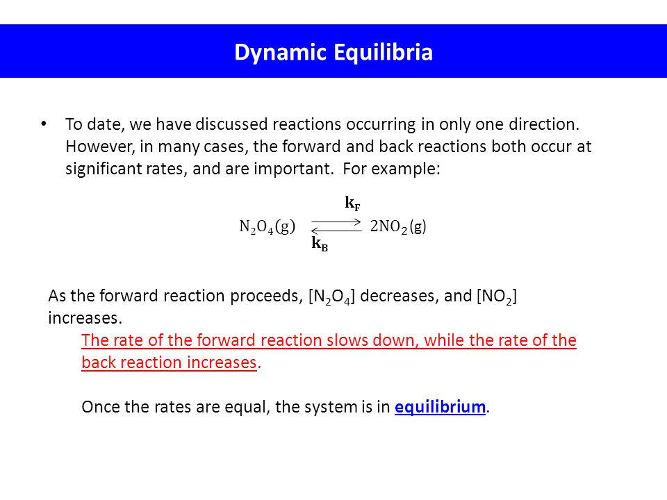 Dynamic Equilibria