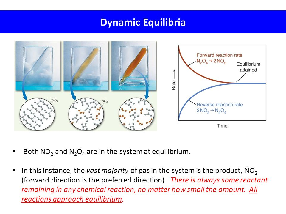 Dynamic Equilibria Both NO2 and N2O4 are in the system at equilibrium.