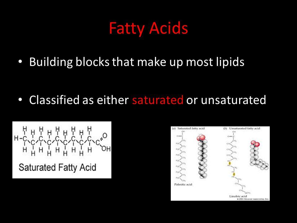 Fatty Acids Building blocks that make up most lipids