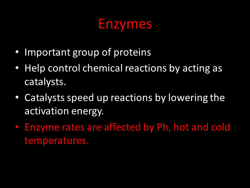 Enzymes Important group of proteins