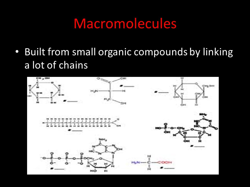 Macromolecules Built from small organic compounds by linking a lot of chains