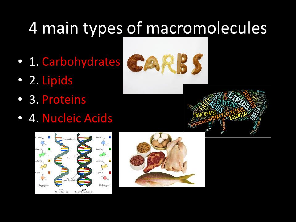 MACROMOLECULES Carbohydrates - Lipids Proteins - Nucleic Acids.