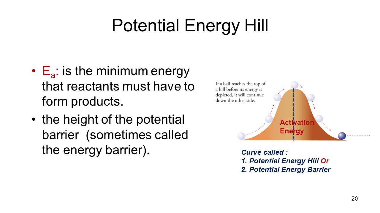 Potential Energy Hill Ea: is the minimum energy that reactants must have to form products.