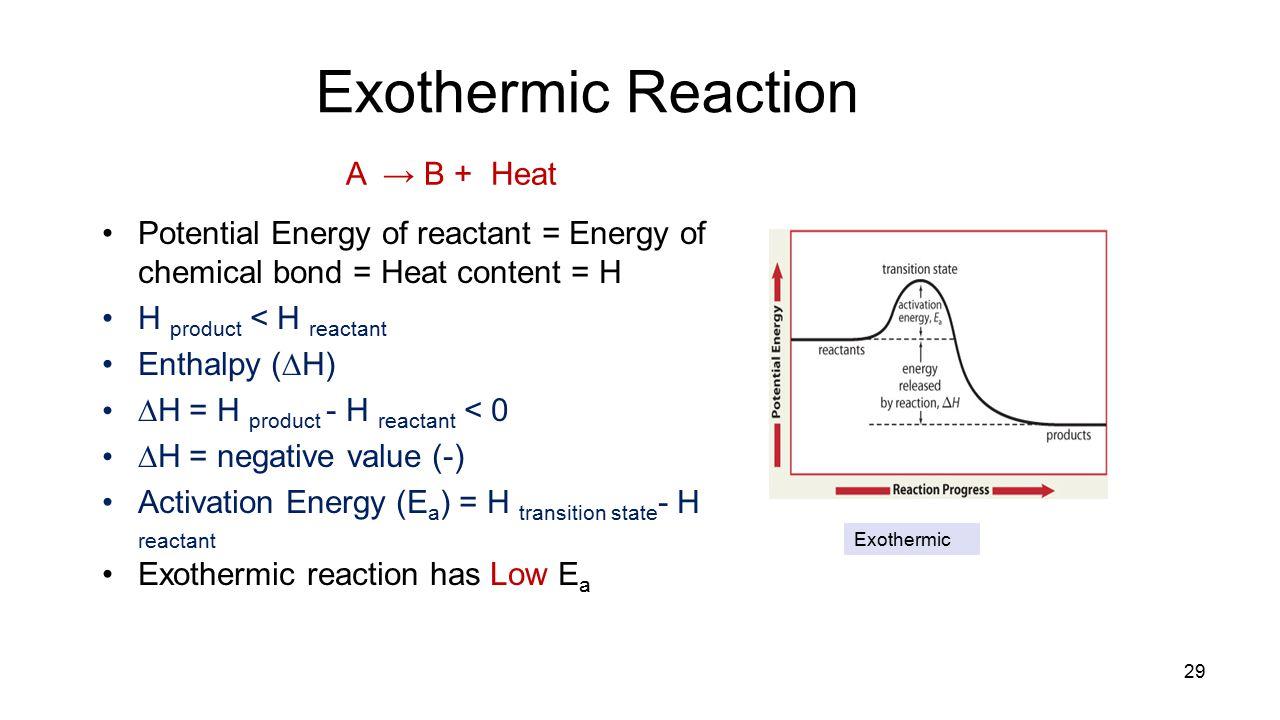 Exothermic Reaction A → B + Heat