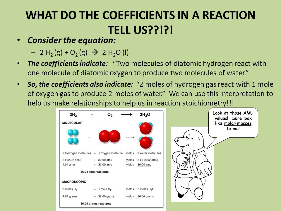 WHAT DO THE COEFFICIENTS IN A REACTION TELL US ! !