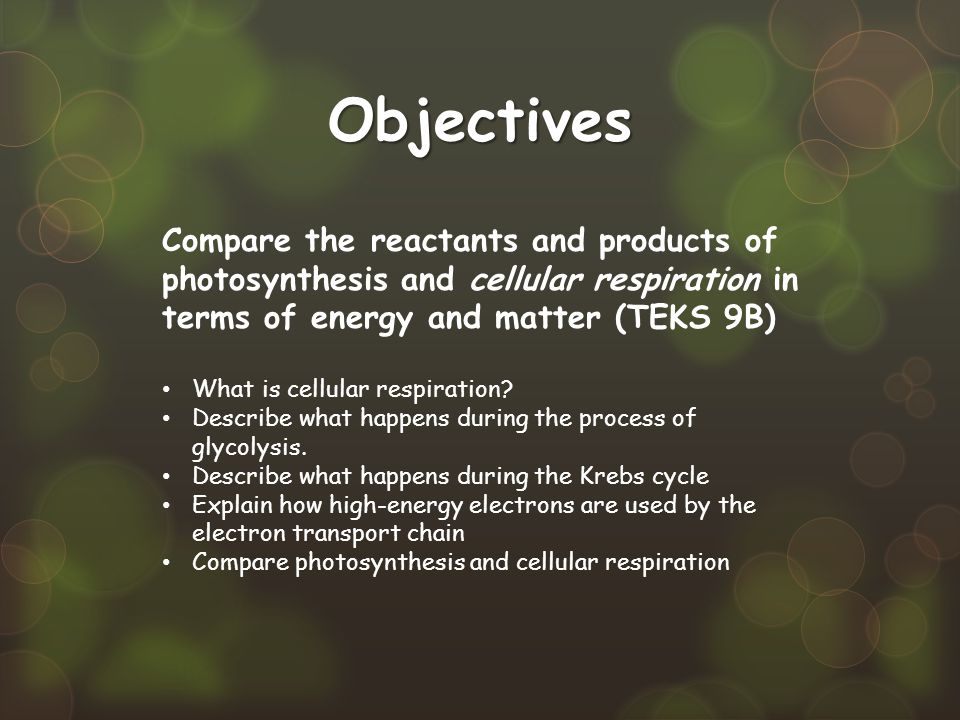 Objectives Compare the reactants and products of photosynthesis and cellular respiration in terms of energy and matter (TEKS 9B)