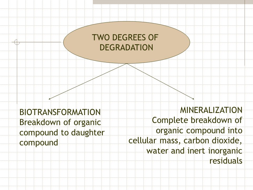 TWO DEGREES OF DEGRADATION. MINERALIZATION.