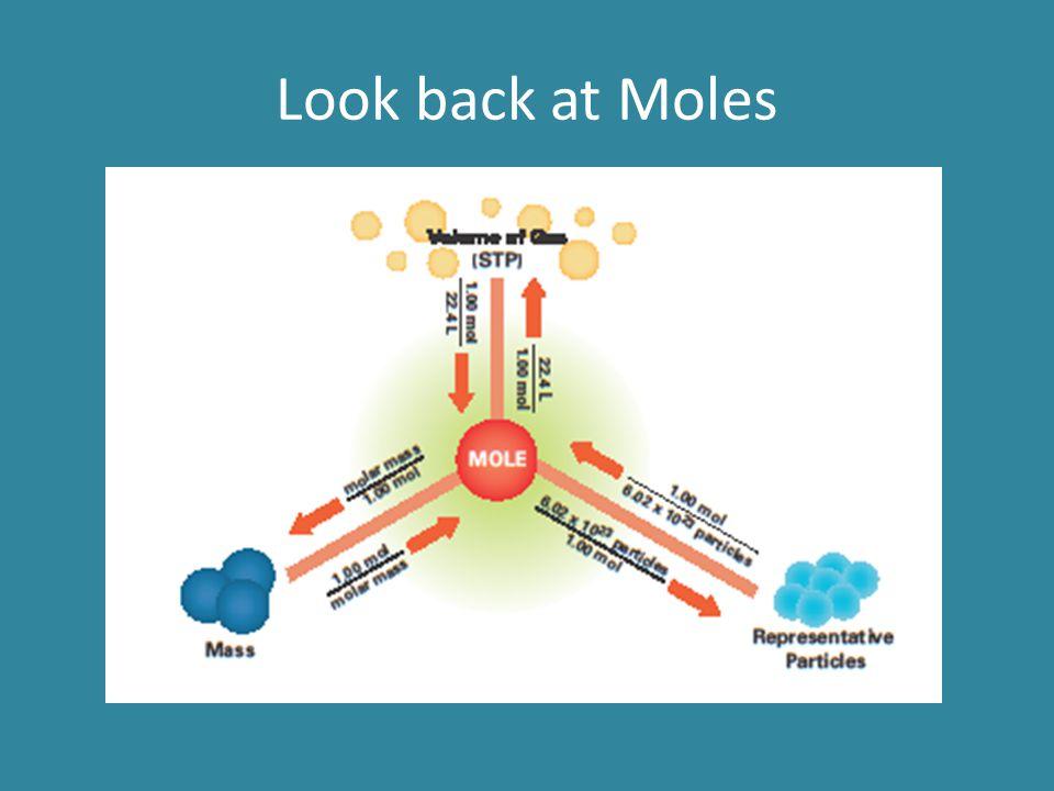 Look back at Moles