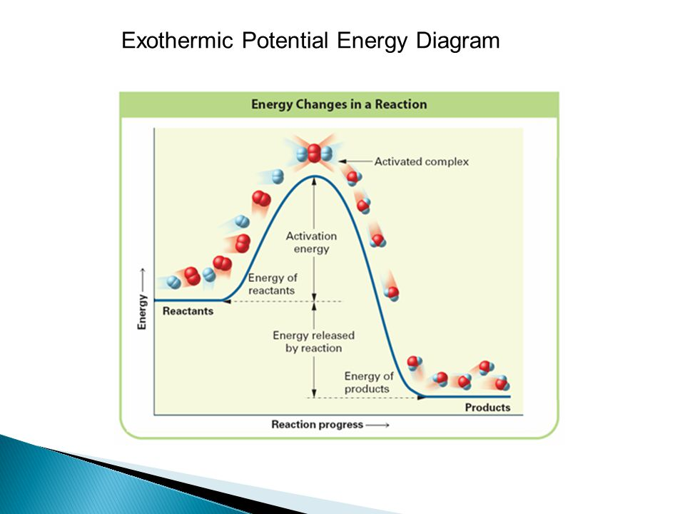 Activation Energy Diagram Exothermic Bigking Keywords And Pictures