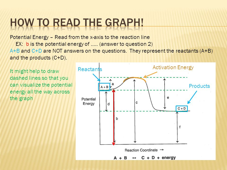How to read the graph! Potential Energy – Read from the x-axis to the reaction line. EX: b is the potential energy of ….. (answer to question 2)