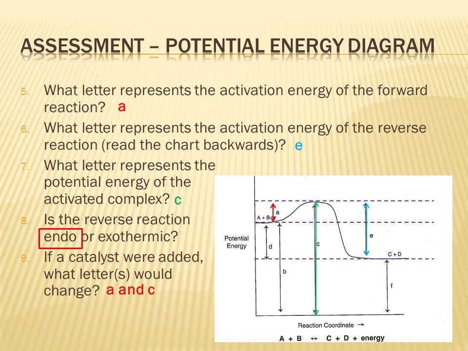 Assessment – potential energy diagram