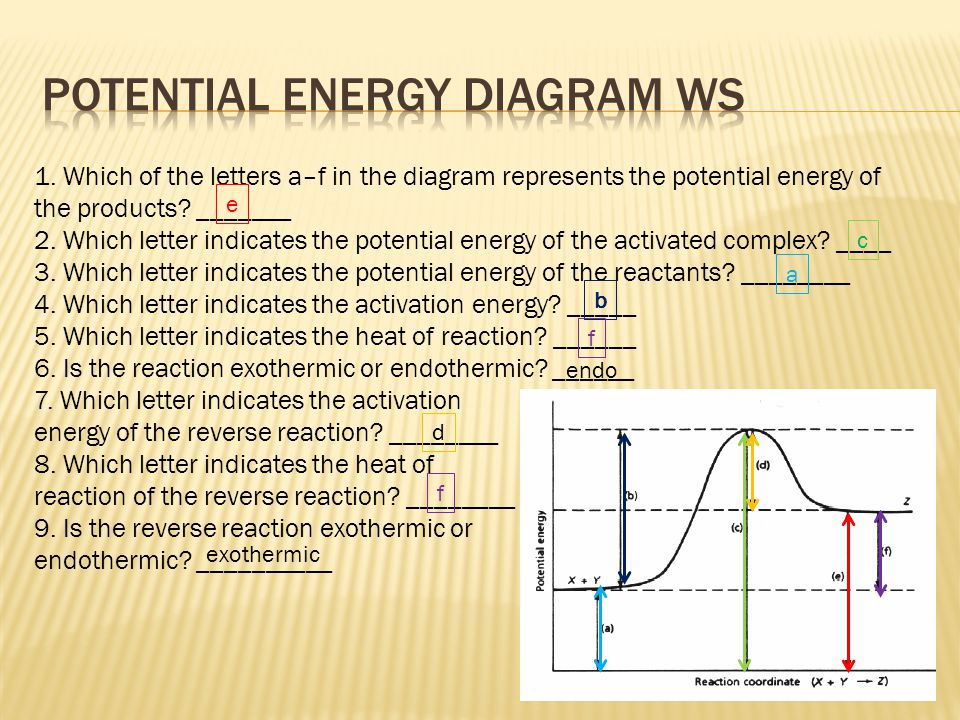 Potential Energy diagram WS