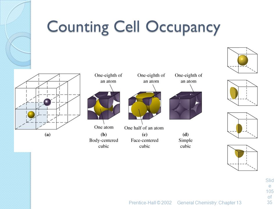 Counting Cell Occupancy