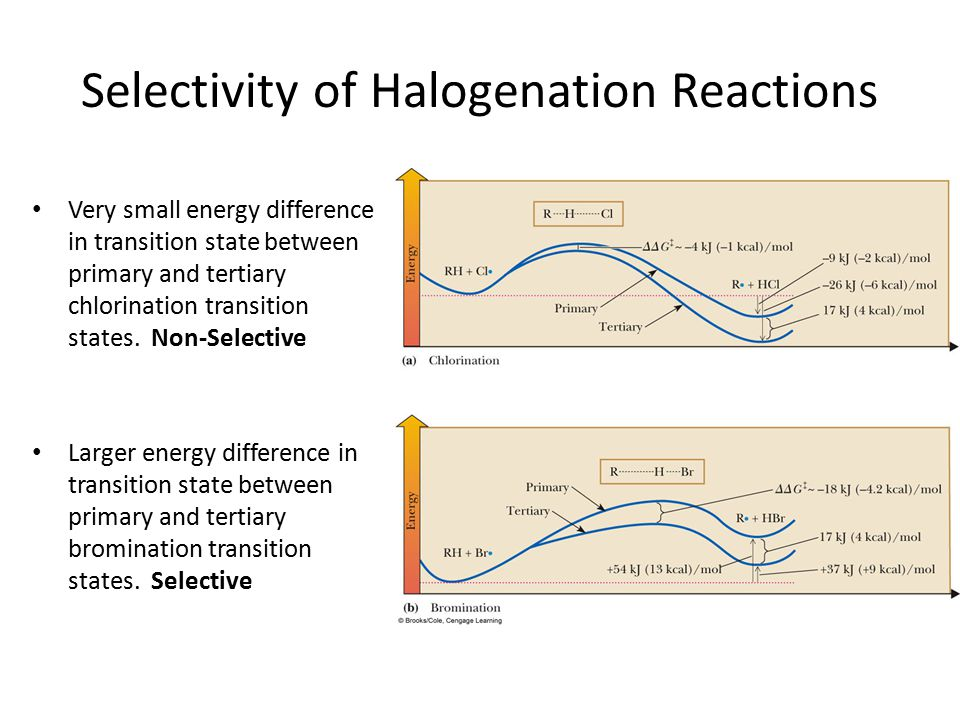 Selectivity of Halogenation Reactions