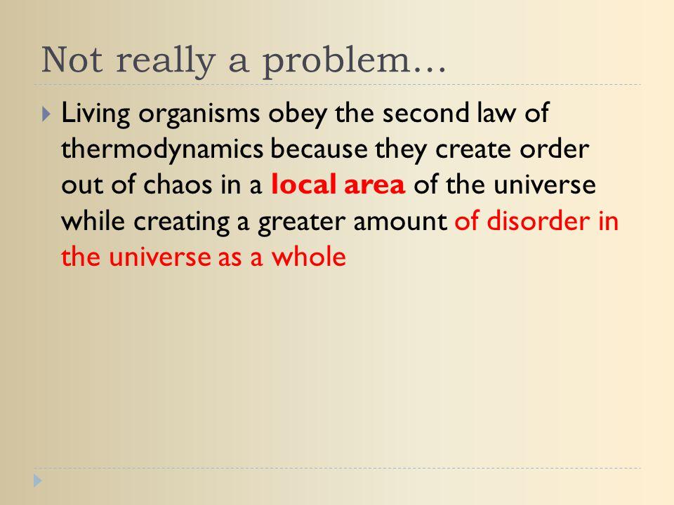 Not really a problem…