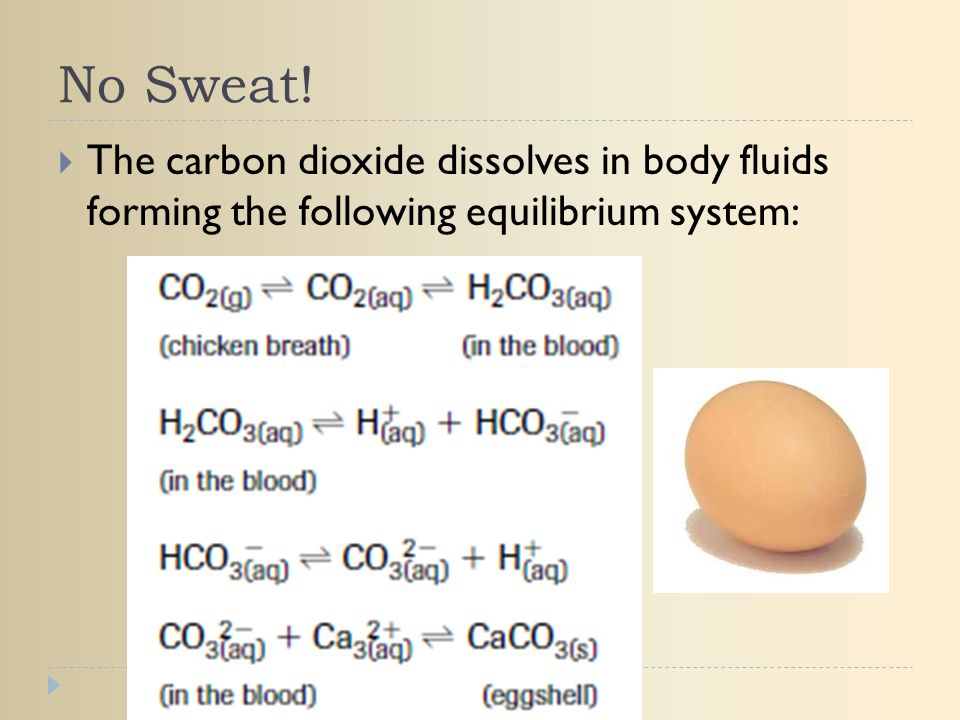No Sweat! The carbon dioxide dissolves in body fluids forming the following equilibrium system: