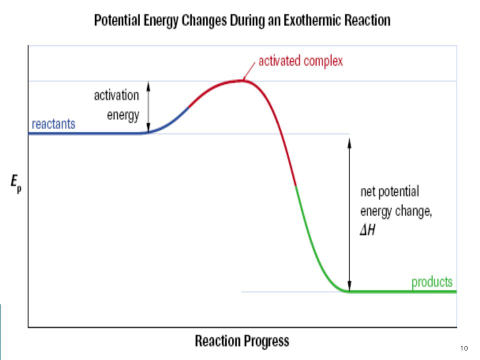 Over the progress of this exothermic reaction, the potential energy (or enthalpy) increases to a maximum as the activated complex forms, then decreases to a final value lower than the initial energy.