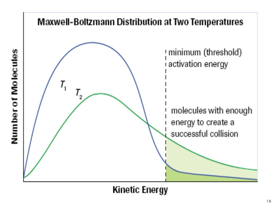 Experiment shows that when the temperature increases from T1 to T2, the shape of the Maxwell- Boltzmann distribution curve flattens and shifts to the right.