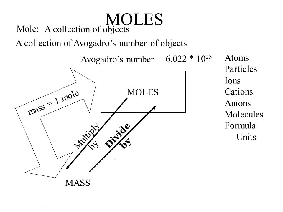 MOLES Mole: A collection of objects