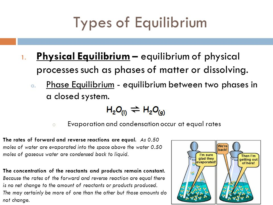 Types of Equilibrium Physical Equilibrium – equilibrium of physical processes such as phases of matter or dissolving.