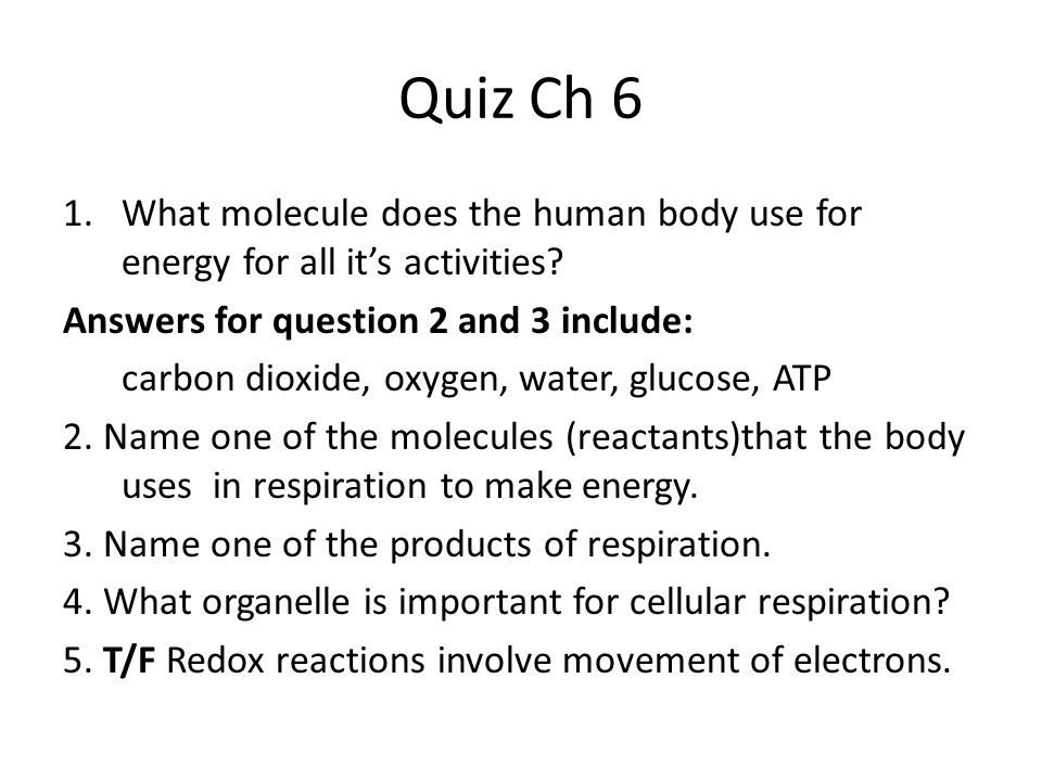 Quiz Ch 6 What molecule does the human body use for energy for all it's activities Answers for question 2 and 3 include: